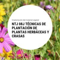 NTJ 08J TÉCNICAS DE PLANTACIÓN DE PLANTAS HERBÁCEAS Y CRASAS